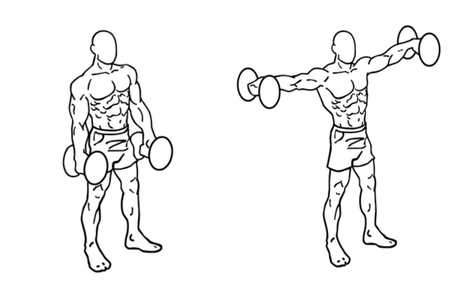 サイドレイズの注意点・コツ 6選!肩の筋肉を効率よく鍛える!