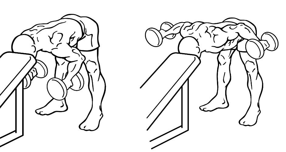 リアレイズのやり方!三角筋後部を鍛える方法について紹介!