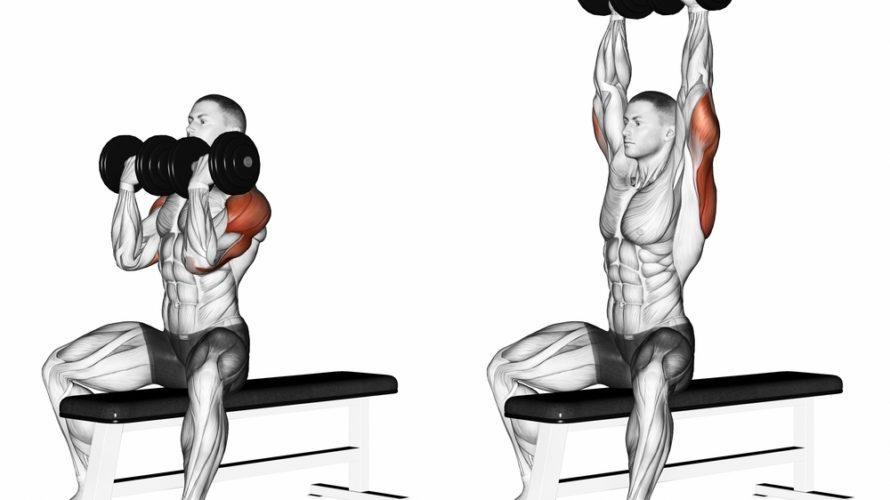 アーノルドプレスの正しいやり方と5つのコツ!肩を効率よく鍛える