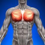 大胸筋上部を集中的に鍛える筋トレ3選!目指せカッコいい胸筋