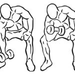 コンセントレーションカールのやり方と効果について紹介!アームカール上腕筋を集中的に鍛える