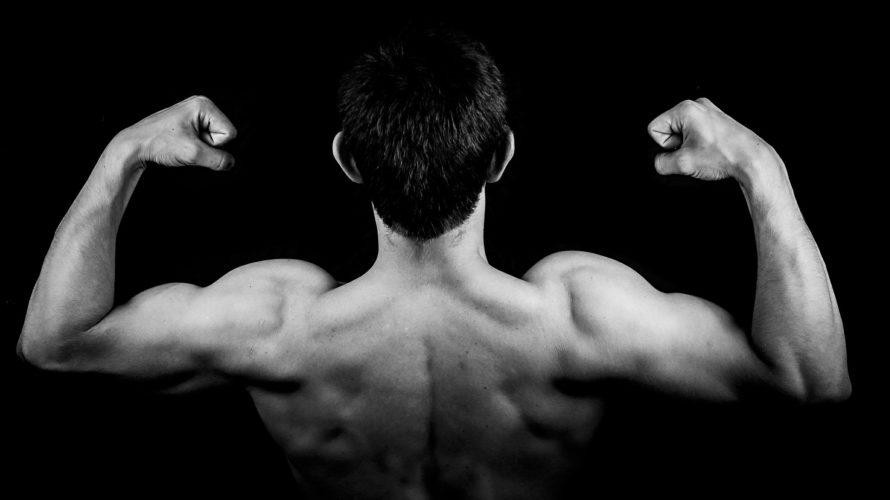 チューブローイングで自宅で広背筋を鍛える!トレーニングチューブの活用方法を紹介