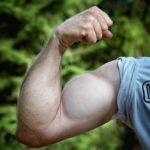 3種類のアームカールのやり方を紹介!腕を太くしたい方必見!