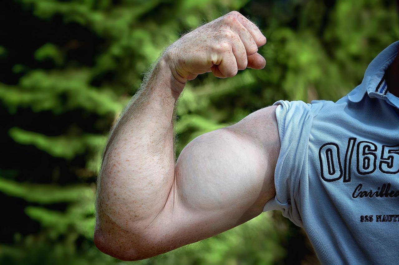 3種類のアームカールのやり方!太い腕を作り上げるための必須筋トレ!